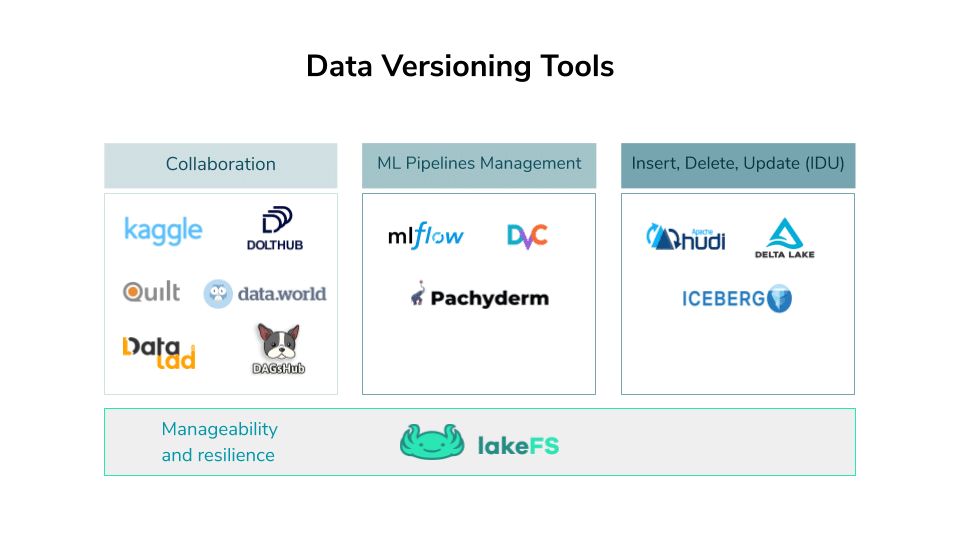 Data Versioning: Does it mean what you think it means?